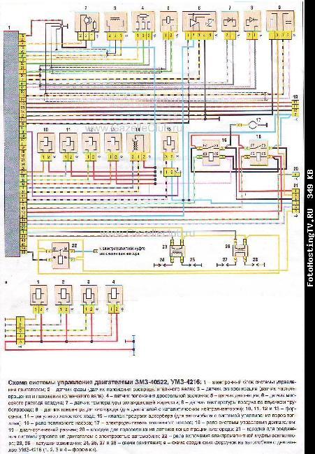 Схема системы управления двигателями ЗМЗ-40522, УМЗ-4216