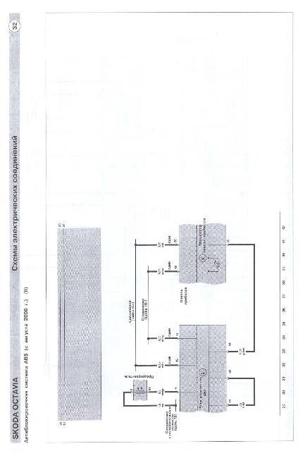 Все о выращивании хризантем в открытом грунте 389